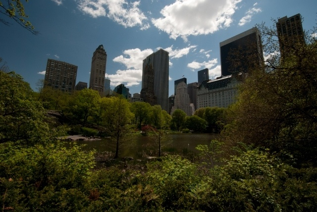 Read more about the article First impressions – an Englishman in New York