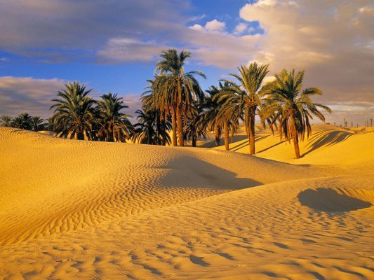Read more about the article Travel advice for post-Arab Spring destinations – Tunisia