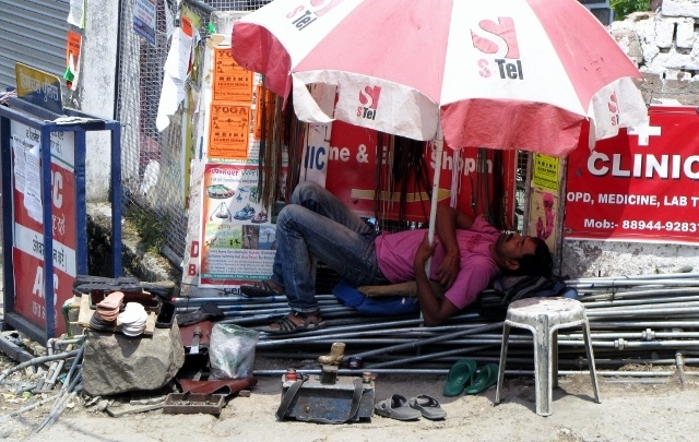 Read more about the article Grown-up Travel Guide Daily Photo: Siesta time, Dharamsala, India
