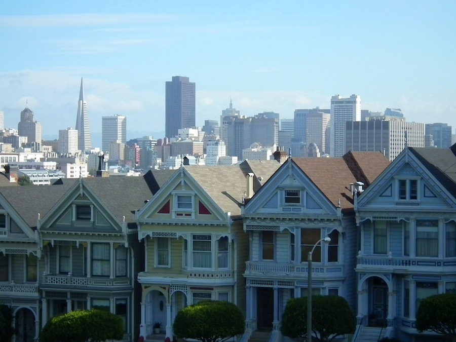 Painted-Ladies