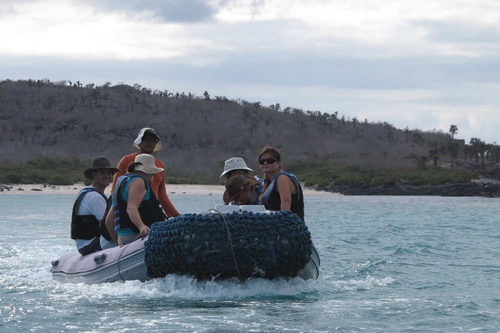 Read more about the article Grown-up Luxury in the Galapagos Islands
