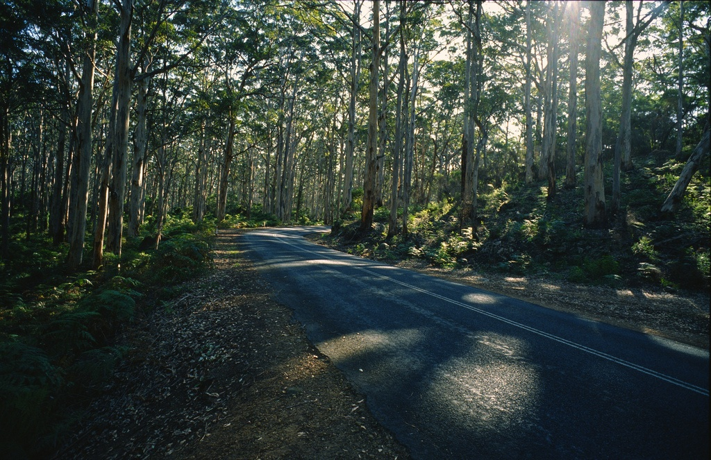 Read more about the article Three Unforgettable Australian Road Trips