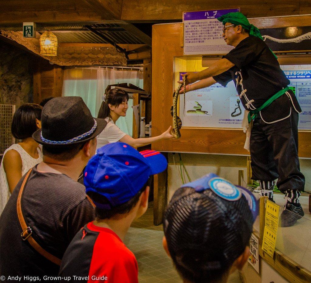 Ryukyu Village touch snake